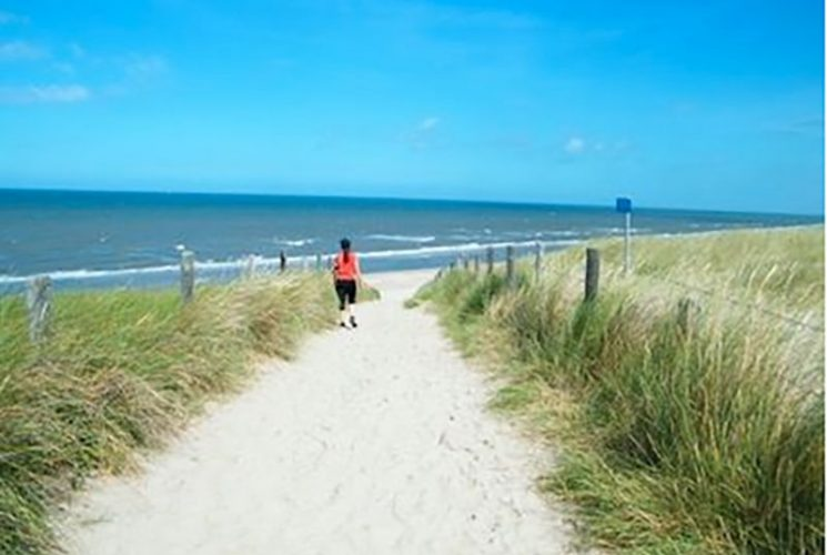 Highlights Of  Holland Strand